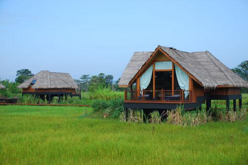 Jetwing Vil Uyana Resort